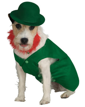 Disfraz de Leprechaun para perro