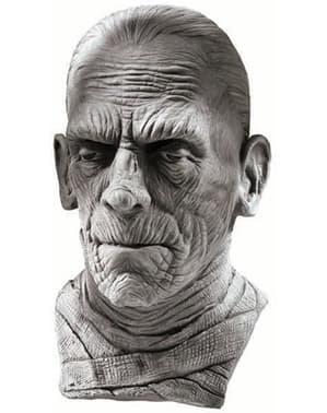 Universal Studios The Mummy Mask