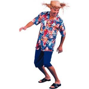Un disfraz de hawaiano que se componga al menos de una camisa muy