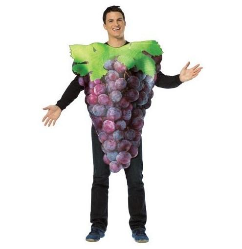 disfraz-de-racimo-de-uvas-moradas