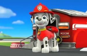marshall-patrulla-canina
