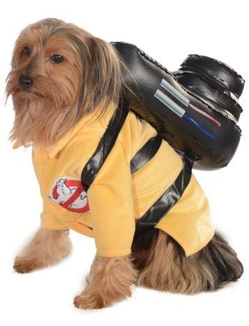 disfraz cazafantasmas perro
