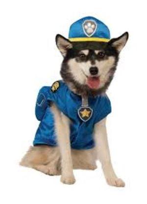 disfraz chase patrulla canina perro