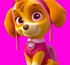 skye-patrulla-canina