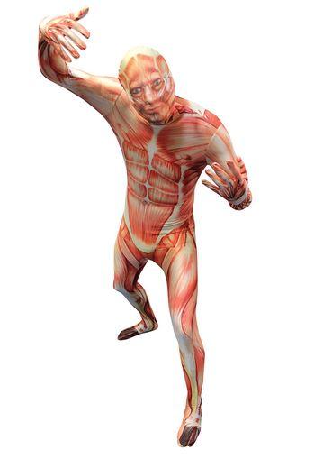 disfraz-musculos-morphsuit