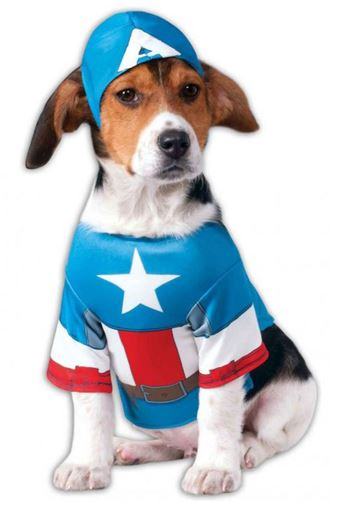 disfraz-capitan-america-perro