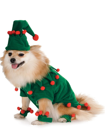 disfraz elfo perro