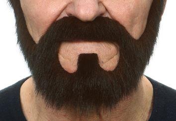 barba con perilla