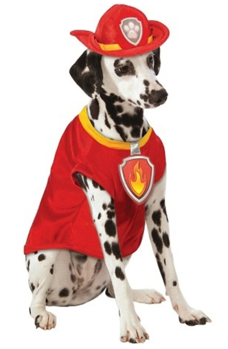 disfraz marshall perro