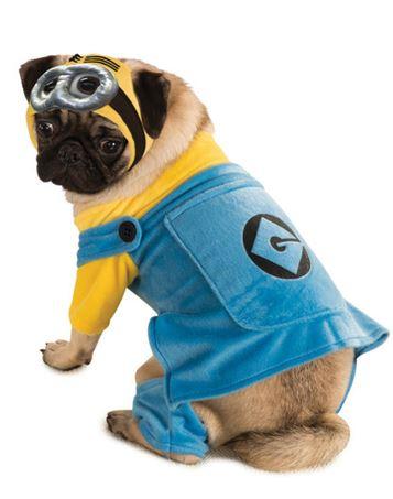 Disfraz Minions perro
