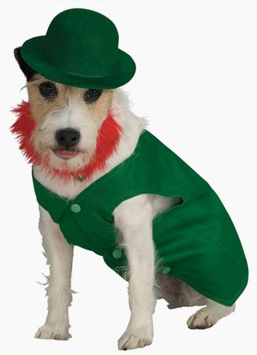Disfraz Leprechaun perro