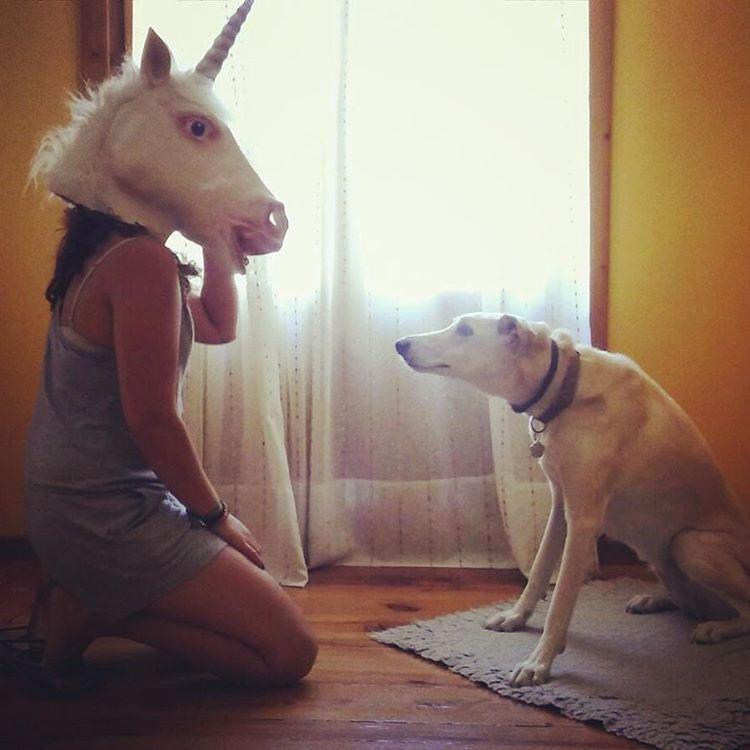 Disfraces de unicornio