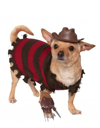 Disfraces de Halloween para perro. Guau! Guauuu! GUAUpísimos!