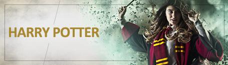 Harry Potter: Disfraces y Merchandising