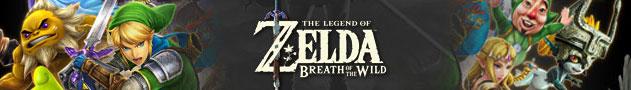 Zelda Costumes