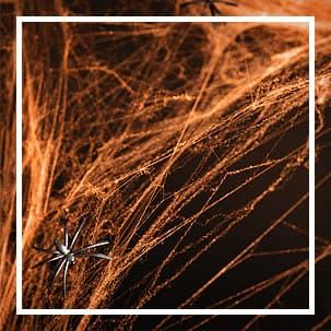 pajek Dekoracijo