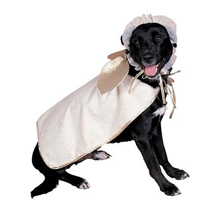 😺 Vestiti cani. Costumi per gatti e animali domestici  9cde3bcc9b25