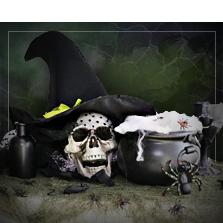 Brujas y Magos