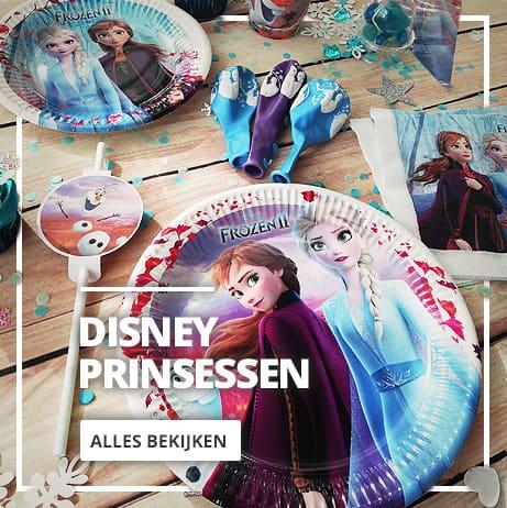 Disney Prinsessen Feestartikelen