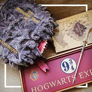 Articles de collection Harry Potter